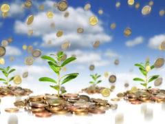 Кредитование частного лица: долговая расписка и договор займа